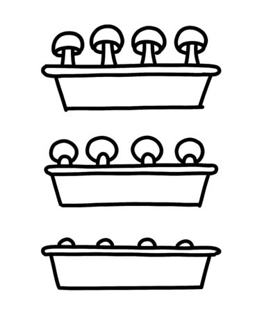 Mushrooms growing Indoors seedlings stages. Mushroom shoots tray. Growing mycelium at home. Development stage animation progression. Vector hand-drawn sketch. Vectores