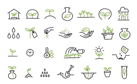 Set of growing seedlings icons. Plant shoots. Agriculture technology. Vector line hand-drawn sketch. Vectores