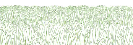 High thick green grass meadow. Lawn growth. Hand drawn sketch. Seamless pattern horizontal banner background. Vector contour line. Illustration