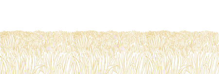 Dry field. Yellow thick grass meadow. Orange lawn. Hand drawn sketch. Horizontal banner background. Vector contour line. Copy space. Illustration