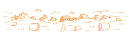 Mown straw grass. Rural landscape. Village field road. Hand drawn sketch. Countryside. Contour vector line. Horizontal banner background. Illustration