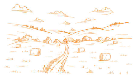 Field road. Rural landscape. Mown straw grass. Hand drawn sketch. Countryside track. Contour vector line. Autumn panorama.