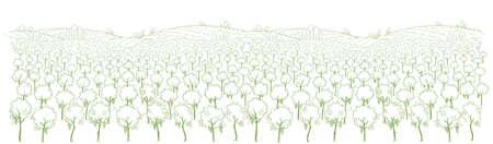 Wine label background. Vineyard landscape sketch. Grapes plantation trees. Grapes plantation. Panorama field. Hand drawn contour line. Illustration