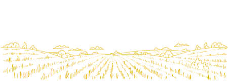 Dry grass meadow. Agriculture field. Hand drawn sketch. Rural landscape panorama. Horizontal banner. Copy space.