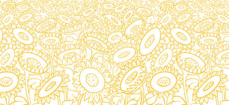 Sunflower field background. Agriculture flower plant. Hand drawn sketch. Oil production wrapper. Thin yellow line. Vector illustration.