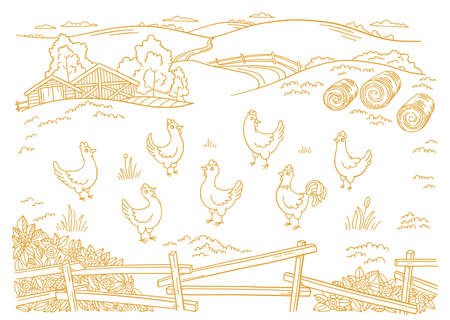 Poultry farm. Chicken factory. Free grazing. Barnyard. Village rural countryside landscape. Rustic fence. Hand drawn sketch. Contour vector line. Illustration