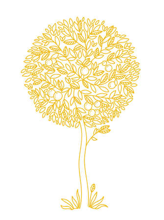 A tree with fruits. Graceful, decorative Leaves and branches. Orange or tangerine. Thin golden contour vector line. Illustration