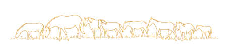 Horses are walking. Hand drawn sketch. One after another. Herd of horses in the forest. Vector illustration. Horizontal banner background.