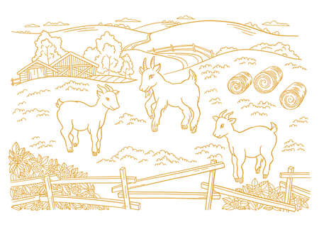 Goatling, yeanling farm is livestock. Three lambs in the barnyard. Hay fodder. Village rural countryside landscape. Rustic fence. Hand drawn cartoon sketch. Contour vector line. Vettoriali