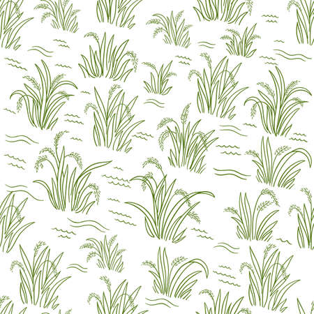Rice field. Green grass. Seamless pattern. Wrapper background. Agriculture harvest. Cereal grain. Oryza sativa plant. Contour line vector. Banque d'images - 156330412