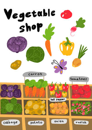 Street market. Vegetable shop ingredients sketch set. Hand drawn. Tomato carrots cabbage and many other vegetables. Vector cartoon colored illustration.