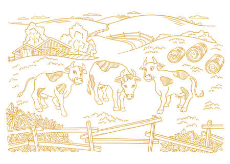 Dairy farm is livestock. Three cows in the barnyard. Hay fodder. Village rural countryside landscape. Rustic fence. Hand drawn cartoon sketch. Contour vector line. Banque d'images - 156106598