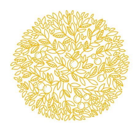 Foliage tree pattern round background. Leaves orange or tangerine the fruit. Orange colour line contour. Sketch vector Illustration hand-drawn.