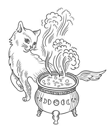Cat witch and cauldron with witchcraft. Halloween. Hand drawn sketch vector. Mystic and occult illustration.