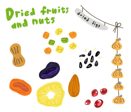 Dried fruits and nuts sketch. Prunes dried apricots and pineapple. Hand drawn. Vector cartoon illustration. Street market.