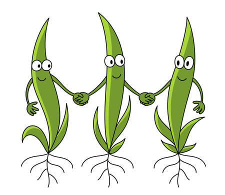 Young plant characters. Friendly shoots germination. Seedlings. Green sprout leaves. Plants friendship growing. Agricultural field. Vector flat. Ilustração