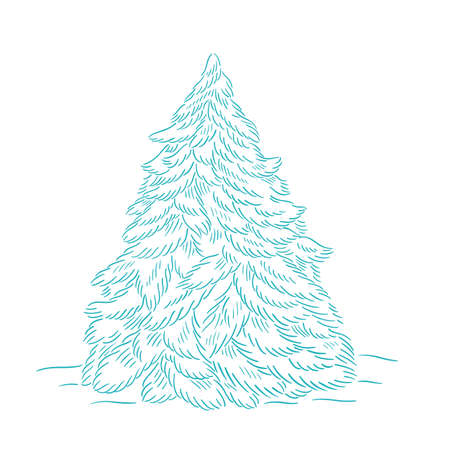 Blue christmas tree. Branch with snow. Conifer spruce. New year fir-tree. Hand drawn contour vector line sketch.