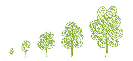 Tree growth stages. Forest growing. Ecology drawing sketch. Plant development phases. Animation progression. Vector infographic set. The life cycle. Childish line. Vettoriali