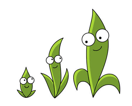Seedlings mascot. Plant growth stages. Agricultural character. development. Harvest animation progression. Ripening shoots period. Vector infographic.