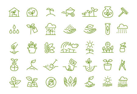 Set of icons. Growing seedlings plant shoots. Agriculture and gardener. Biotechnology plants. Sowing seeds. Vector contour green line.