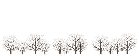 Trees in a dry winter forest. Without leaves. Horizontal landscape. Vector illustration. Copy space.