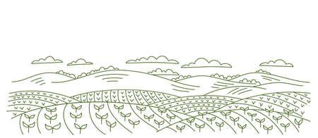 Agricultural field landscape. Seedlings of cereals. Rural countryside. Vector hand-drawn. Contour sketch line drawing.