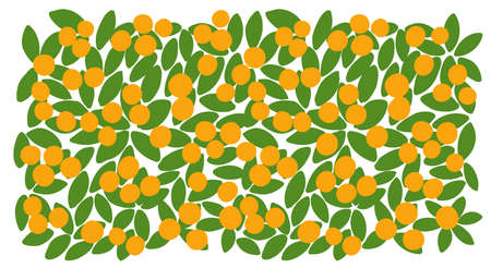 Orange fruits tree leaves background. Orchard garden harvest. Vector. Very simple picturesque horizontal. Hand drawn sketch. Illustration
