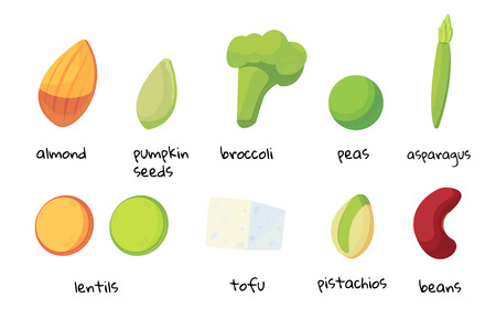 Set of foods high in protein. Beans, broccoli, asparagus, tofu, peas, lentils, almonds, pistachios, pumpkin seeds Vegan protein is a resource Flat vector illustration