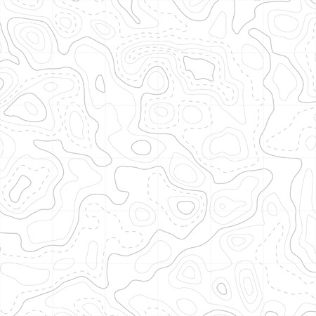 Relief topographic map of the area with high-level contour contours and geodetic grid. Abstract vectror line background isolated on white. 向量圖像