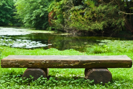 Wooden bench in the forest Archivio Fotografico
