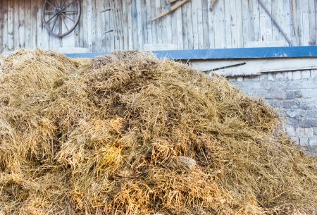 manure: Pile of straw with manure