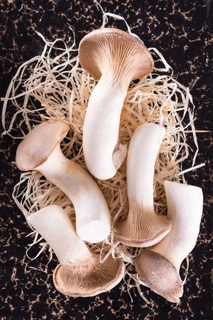 Fresh raw mushrooms Archivio Fotografico