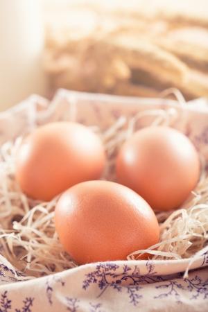 Macro shoot of brown eggs at hay nest photo