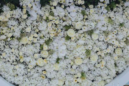 Wedding Background of white flowers Imagens