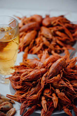 two large white plates with boiled crawfish, boiled shrimps and glass of beer on a light background Banque d'images