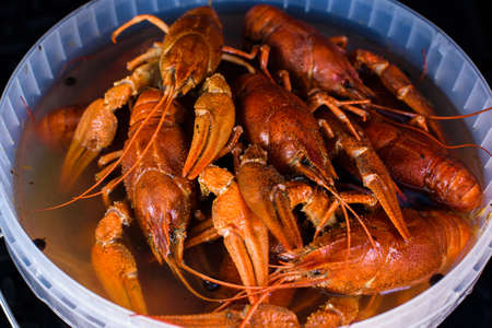 boiled crayfish in a bowl
