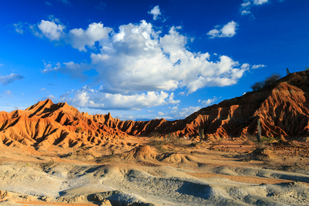 grandes cactus en desierto rojo, el desierto de la Tatacoa, Colombia, América Latina, las nubes y la arena, arena roja en el desierto Foto de archivo