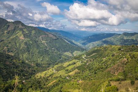 latin america: jungle in colombian green mountains, colombia, latin america Stock Photo