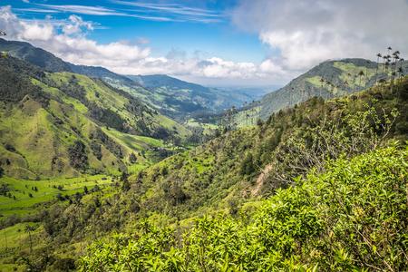 landscape jungle in green mountains, colombia, latin america Standard-Bild