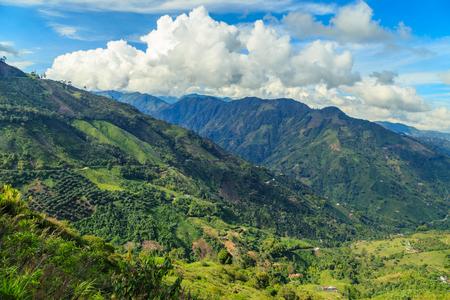 緑豊かな山々、コロンビア、ラテン アメリカのジャングルを風景します。 写真素材