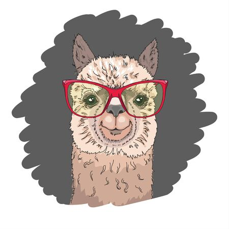 Cool poster. Portrait of a cheerful llama in sunglasses. Greeting card, t-shirt composition, hand-drawn print style. Vector illustration