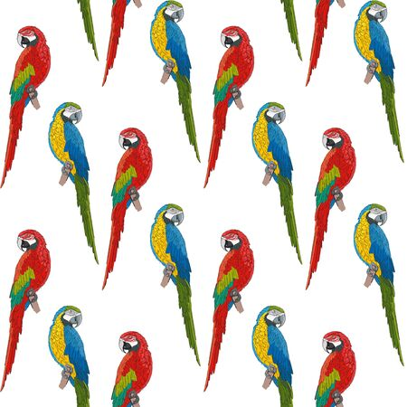 Exotic macaw parrots. Blue-yellow and red-green parrots on a white background. Seamless pattern.