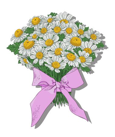 A festive delicate bouquet of white-yellow daisies tied with a pink ribbon on a white background. Vector drawing for cards and posters.