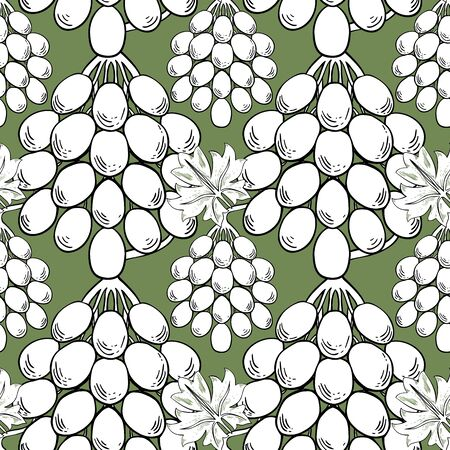 White bunches of grapes on a green background. Seamless vector pattern for different surfaces. Ilustração