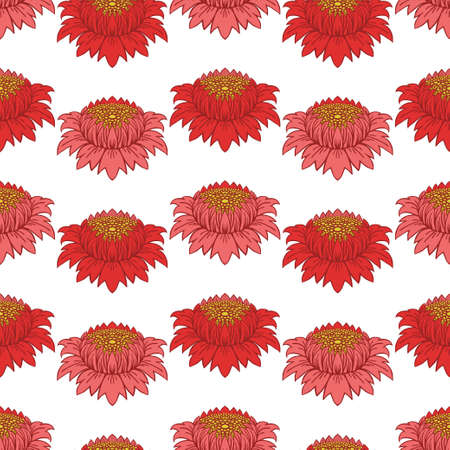 Red and pink vintage peonies buds. Symmetrical flowers on a white background. Seamless vector pattern.