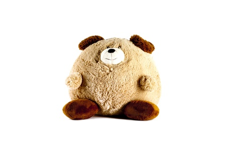 sweet stuff: Stout Brown Teddy Bear