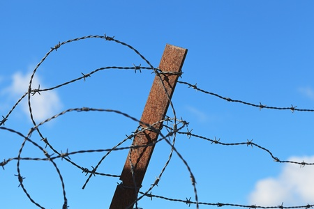 Barbed wire  Stock Photo - 12569766