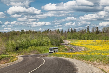 A country road through and near the forest Stock Photo - 13638050