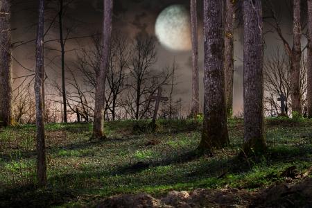 cementerios: La segunda versi�n de la imagen sin nubes