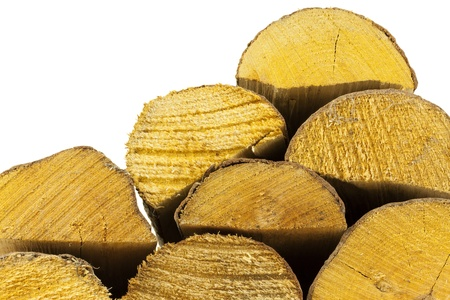 co2 neutral: View of the stacking firewood from the bottom Stock Photo